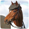 Откуда пошло выражение «конь в пальто»?