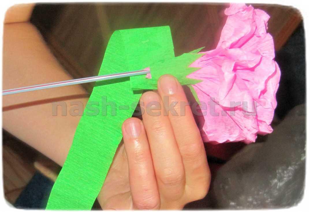 стебель бумажного цветка