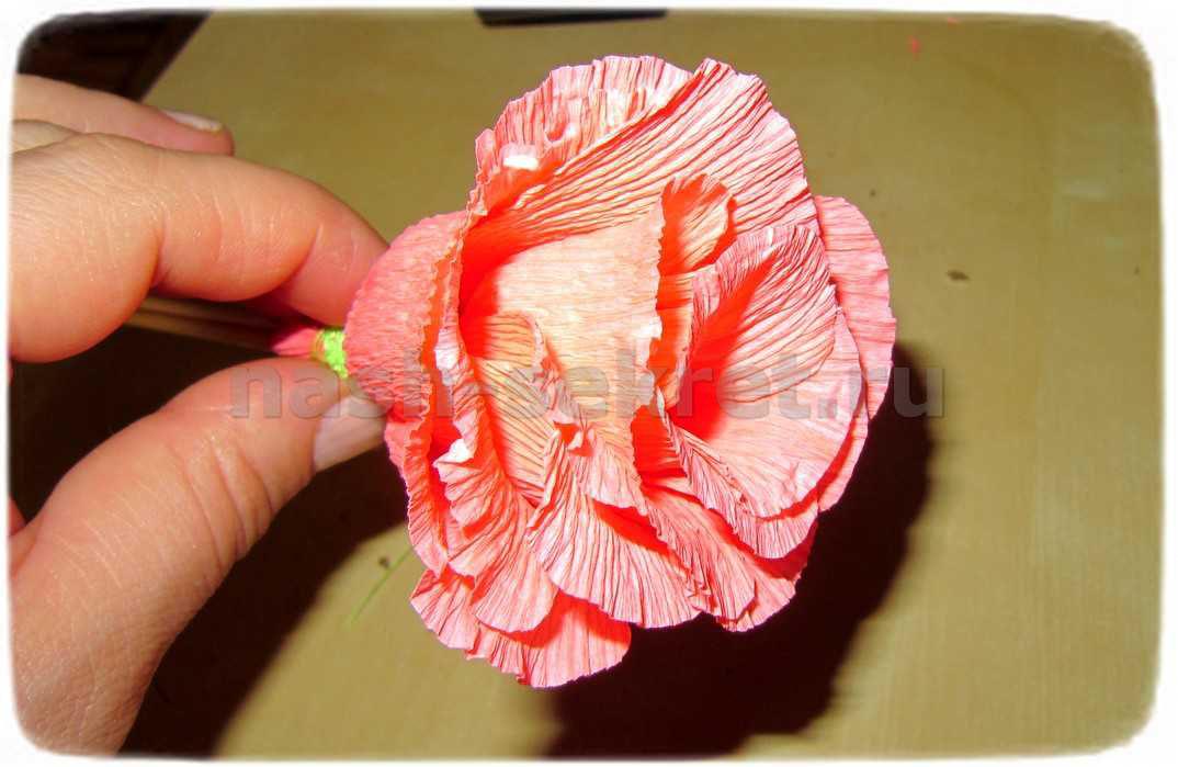 цветок из гофробумаги мк