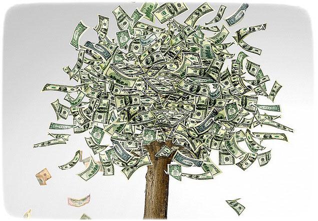 Как посадить толстянку для привлечения денег