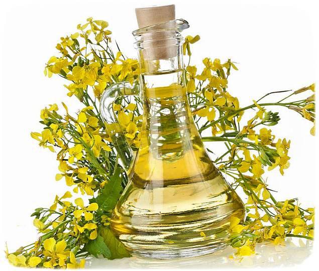 Рапсовое масло полезные свойства и противопоказания