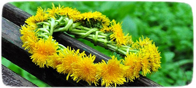 Цветы из фоамирана с пошаговым для начинающих