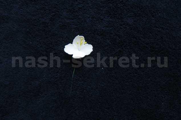 Изображение 012
