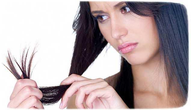 почему секутся кончики волос и что делать