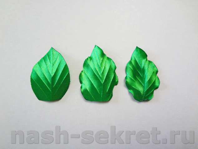 прожилки на листочках