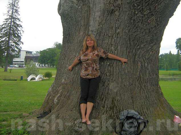 Дендротерапия как лечиться деревьями
