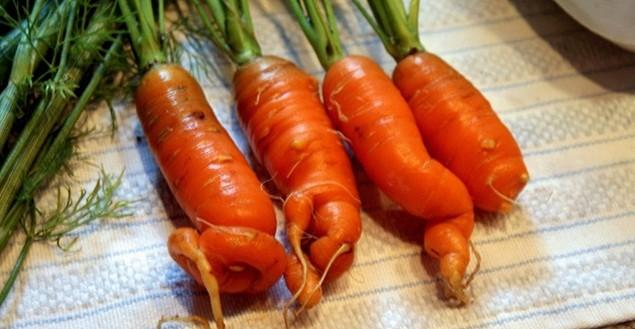 Кривые морковки