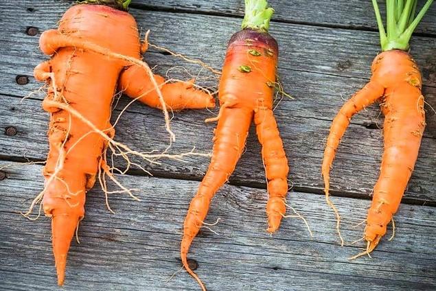 Морковь с корнями