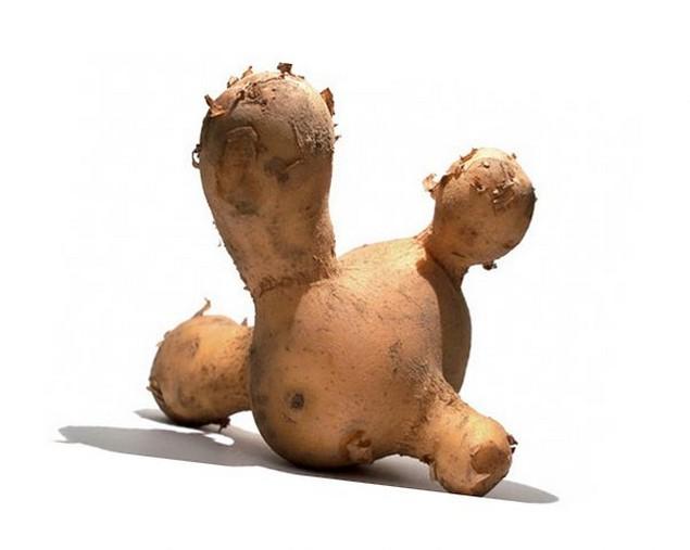 Картошка интнресная